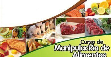 Certificado de Manipulación de Alimentos