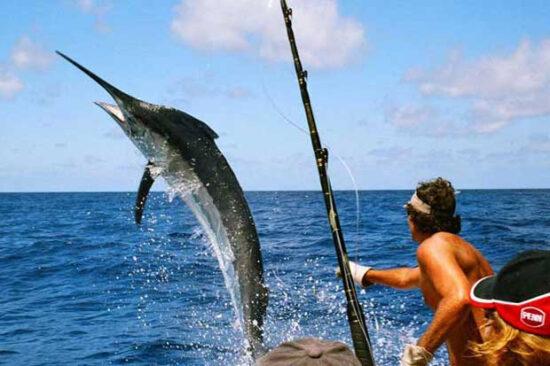 Certificado de Pesca Deportiva INTRO