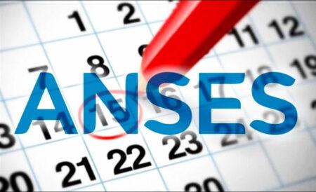 remuneracion ANSES