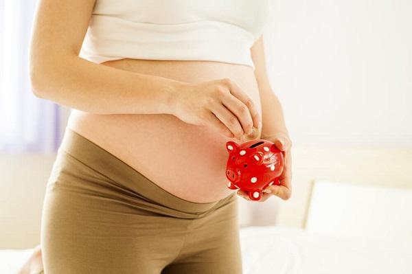 Formulario 2.55: Formulario Prenatal ANSES