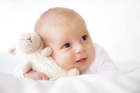 Formulario de Nacimiento 1 Tramitar El Formulario De Nacimiento ANSES