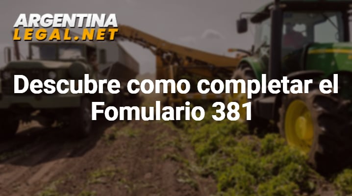 Descubre Como Completar El Formulario 381